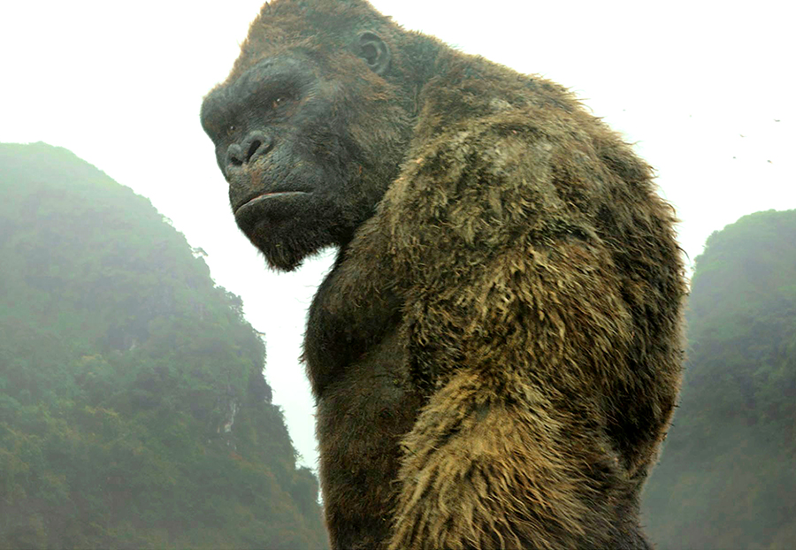 """This image released shows King Kong a scene from, """"Kong: Skull Island."""" (Warner Bros. Pictures via AP)"""