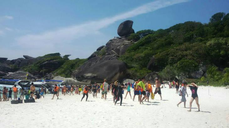 Thailand News 08-03-17 5 NNT Similan Islands see highest revenue in 35 years 1JPG
