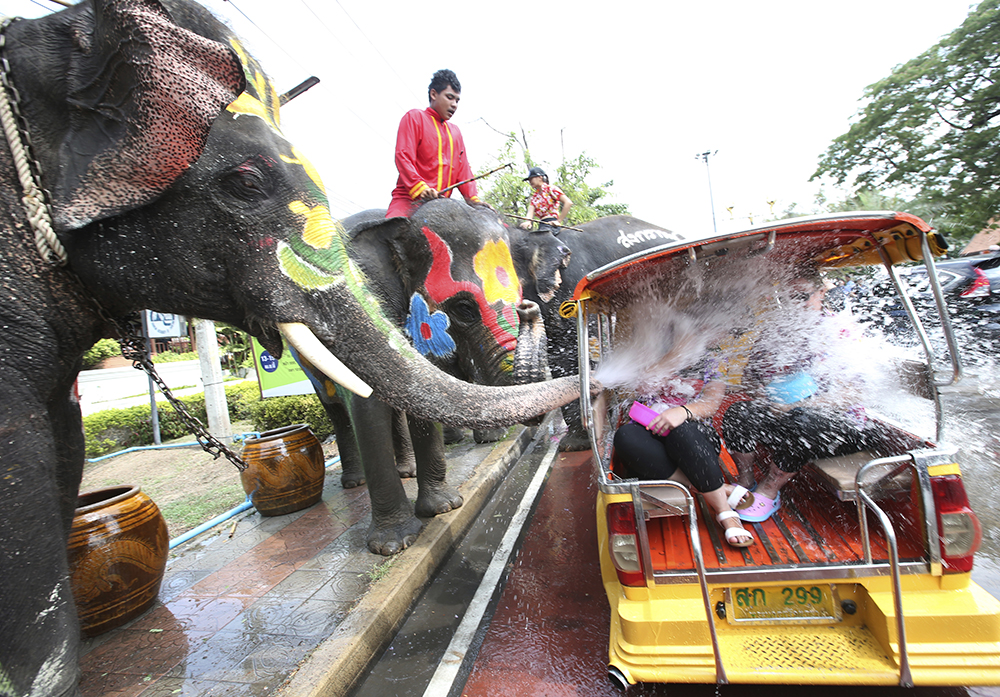 Elephants spray water at tourists on a Tuk Tuk in Ayutthaya province, central Thailand. (AP Photo/Sakchai Lalit)