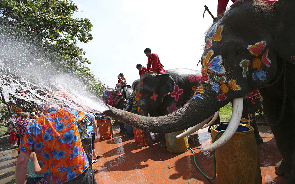 Elephants spray water at tourists in Ayutthaya province, central Thailand. (AP Photo/Sakchai Lalit)
