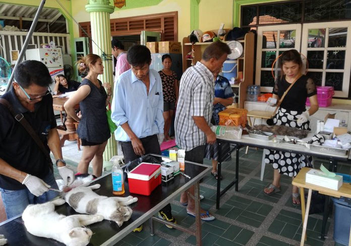 Pattaya brought its campaign for rabies vaccinations and pet sterilizations to the Mab Pradu Community.