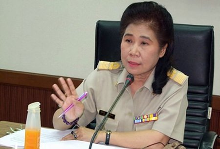 Chonburi Provincial Public Relation Office Director Thitirat Sriteerawiroj outlines the Ministry of Public Health's strategy to comply with the World Health Organization's goals of eliminating rabies by 2020.