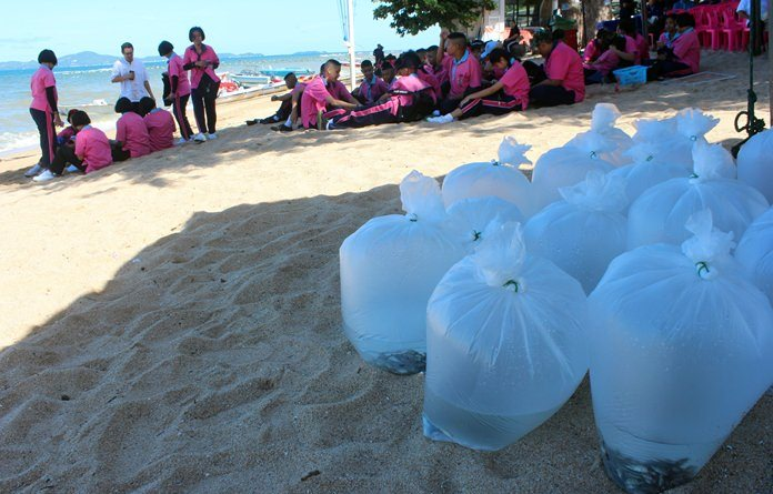 Pattaya commemorated World Environment Day by releasing nearly 50,000 fish into the sea.
