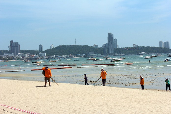 Pattaya workers gave the middle of Pattaya Beach a minor facelift, removing garbage and natural hazards and restoring the sandy surface.