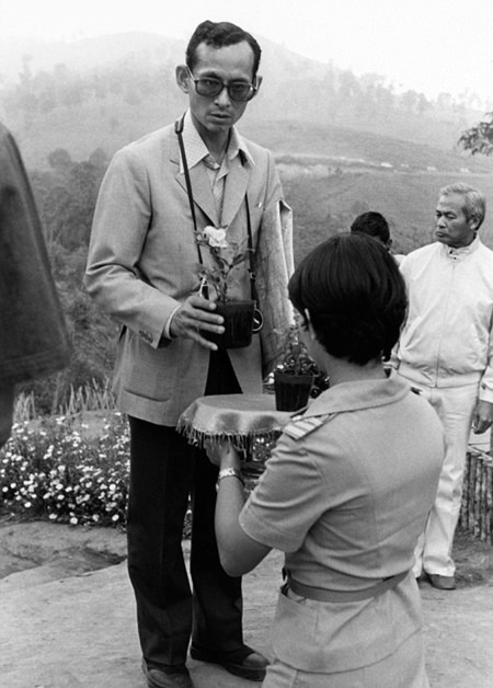 His Majesty King Bhumibol Adulyadej receives a small plant from a woman in 1981 as he makes a visit to one of his crop substitution projects in Northern Thailand. (AP Photo/File)