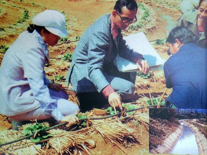 The Royal Development projects initiated by the King helped uplift the well-being of the hill tribe people in northern Thailand.