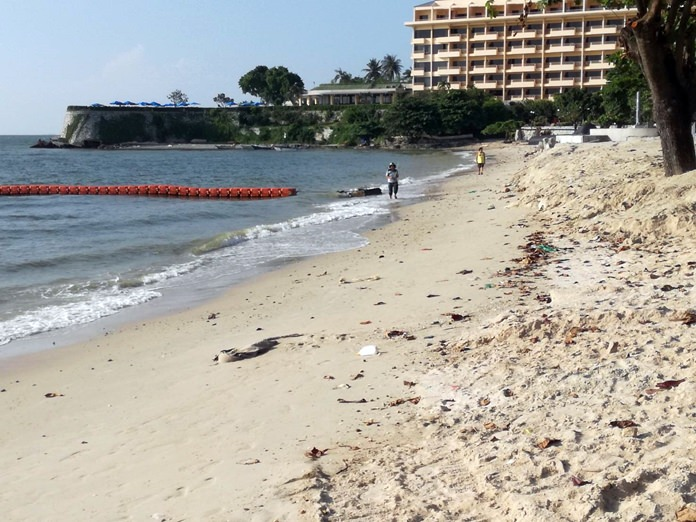 The sandbags and fence left over from the long-stalled Pattaya Beach restoration project have been removed, but questions remain over when officials will restart the critical work to save the shoreline from erosion.