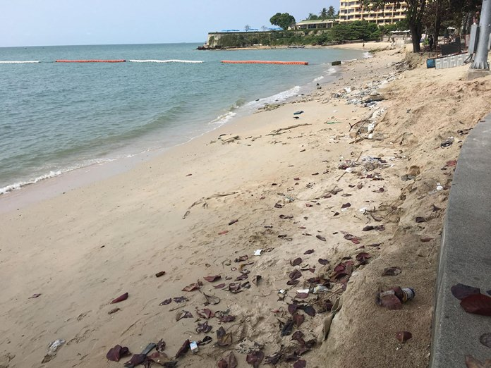 Piles of old garbage, dead fish and animal carcasses litter the north end of the beach.