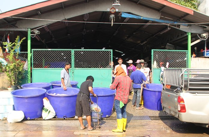 A Naklua chicken wholesaler was given a week to stop dumping poultry blood and waste into the street and Pattaya's sewers and to stop blocking traffic.