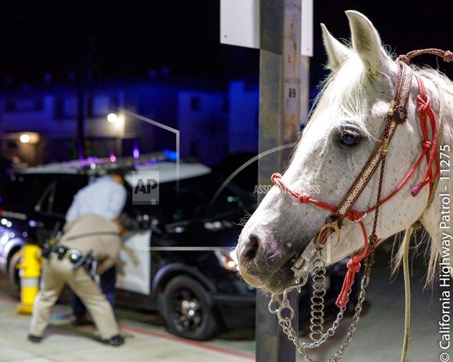 (California Highway Patrol, Santa Fe Springs via AP)