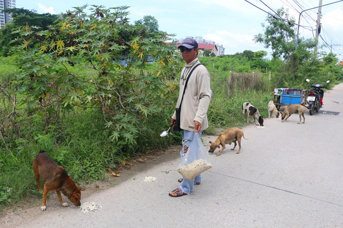 Jirawat Chomchai spends a chunk of his income feeding stray dogs in the Na Jomtien area.