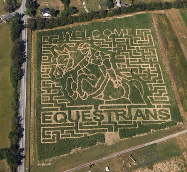 In this aerial photo taken on Sept. 21, 2010, a giant corn field maze at the Kelley Farms welcomes the riders for the World Equestrian Games, in Lexington, Ky. (Charles Bertram/The Lexington Herald-Leader via AP)