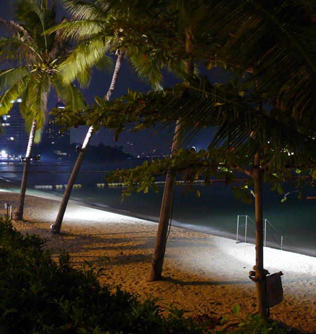 The romantic beach at night.