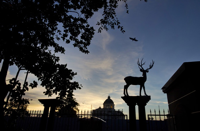 A bird flies over a sculpture of a deer fixed atop the boundary fence of Dusit Zoo as the Ananta Samakhom Throne Hall looms over in the background in Bangkok. (AP Photo/Gemunu Amarasinghe)