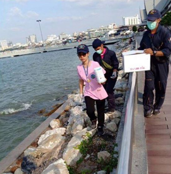 The Public Health Department brought more traps and poison to the Bali Hai Pier area to tame the rat population.