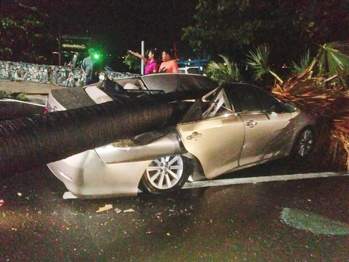 Sirot Pungchum's Toyota Camry was demolished when an old tree fell on it during a storm in Sattahip.