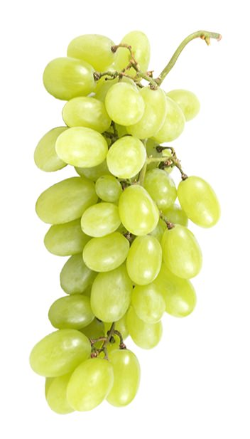 Viognier grapes.