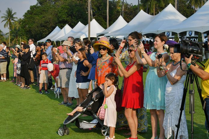 Spectators enjoy a thrilling final match between Thai Polo and La Familia.