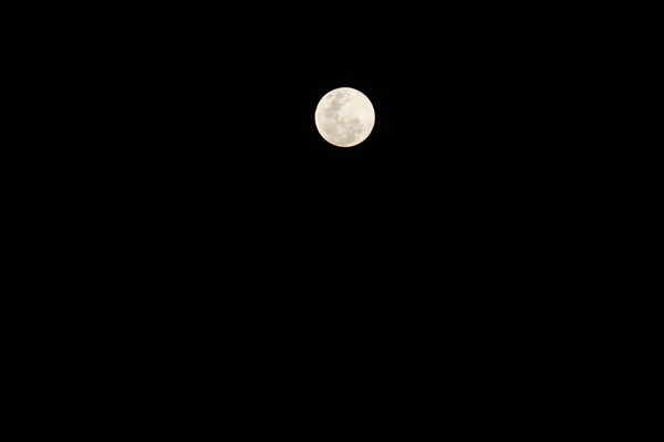 The night was blessed with a super snow moon during one of its closest approaches to earth at only 356,800 km away.
