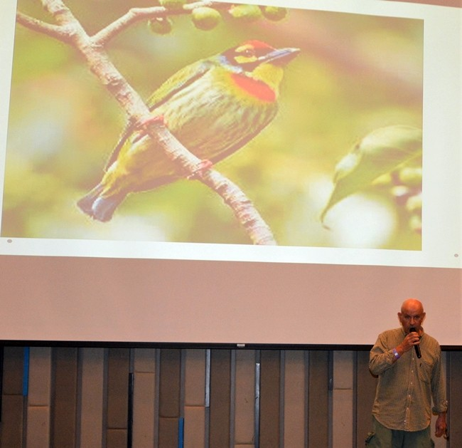 Many slides such as this one were shown by Jonathan Finch while he described their specific traits such as color, bill, and tail needed to identify a particular type of bird.