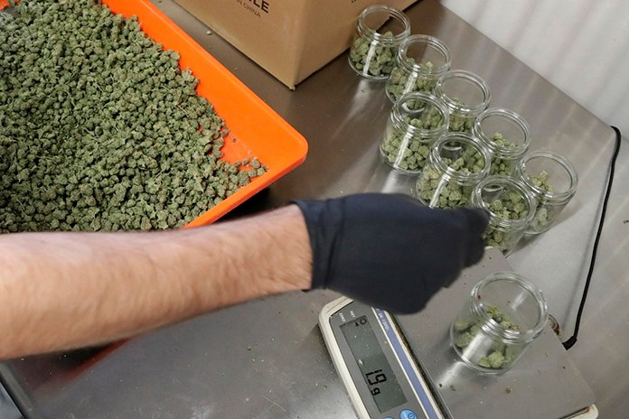 In this Friday, March 22, 2019 file photo, an employee at a medical marijuana dispensary in Egg Harbor Township, N.J., sorts buds into prescription bottles. At the end of 2018, about 1.4 million Americans are actively using marijuana to treat to treat anxiety, sleep apnea, cancer and other conditions, according to an Associated Press analysis of states that track medical marijuana patients. (AP Photo/Julio Cortez, File)