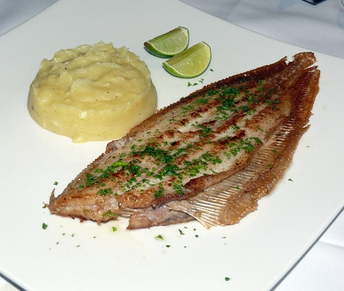 An angry Dover Sole.