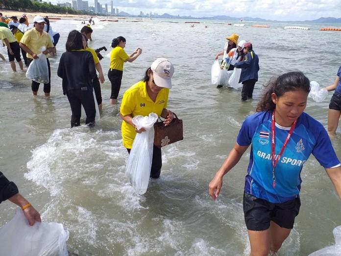 Pattaya celebrated World Environment Day by releasing 15,000 Asian sea bass.