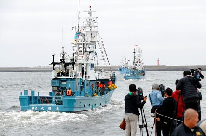 Whaling boats leave a port in Kushiro, Hokkaido, northern Japan Monday, July 1, 2019. (Masanori Takei/Kyodo News via AP)