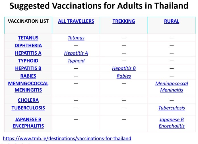 Of particular interest to his audience was this chart Andy Barraclough displayed showing suggested vaccinations for those living in Thailand.
