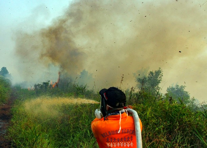 Firefighters spray water to extinguish brush fires in Kampar, Riau province, Indonesia, Wednesday, Sept. 11, 2019. (AP Photo)
