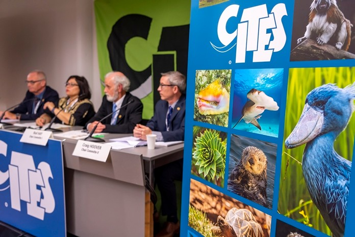 Thomas Jemmi, CITES Cop18 Chair, Ivonne Higuero, CITES Secretary-General (Convention on International Trade in Endangered Species of Wild Fauna and Flora), Rod Hay, Chair Committe I, Craig Hoover, Chair Committe II, from left, speak during a press conference for the closing session of the World Wildlife Conference - CITES CoP18, in Geneva, Switzerland, Wednesday, August 28. (Martial Trezzini/Keystone via AP)