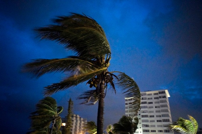 Strong winds move palm trees at the first moment of the arrival of Hurricane Dorian in Freeport, Grand Bahama, Bahamas, Sunday Sept. 1, 2019. (AP Photo/Ramon Espinosa)