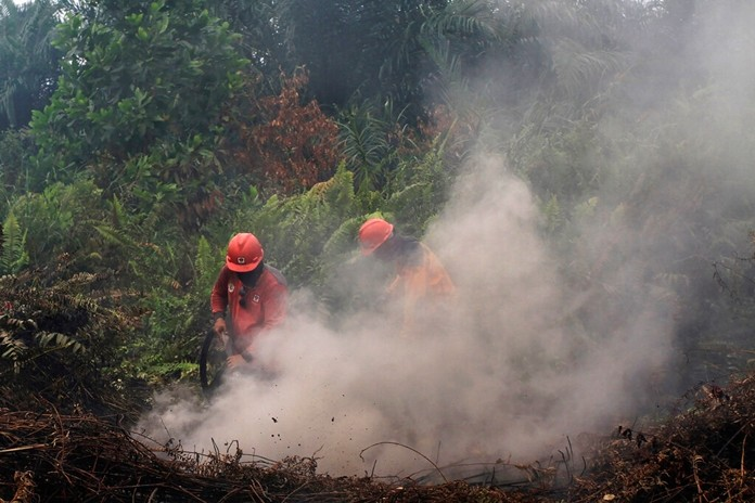 Firefighters try to extinguish brush fires in Pekanbaru, Riau province, Indonesia, Saturday, Sept. 14, 2019. (AP Photo)