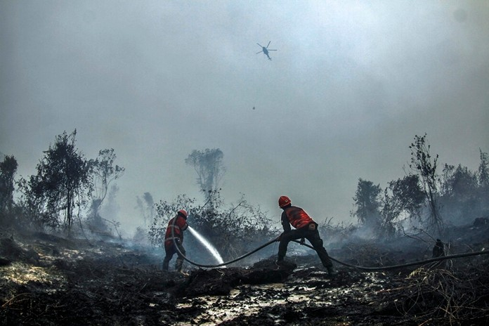 Firefighters spray water to extinguish forest fire in Kampar, Riau province, Indonesia, Wednesday, Sept.18, 2019. (AP Photo/Rafka Majjid)