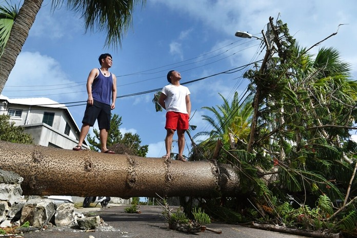 Men stand on a tree felled by Hurricane Humberto on Pitts Bay Road in Hamilton, Bermuda, Thursday, Sept. 19, 2019. (AP Photo/Akil J. Simmons)