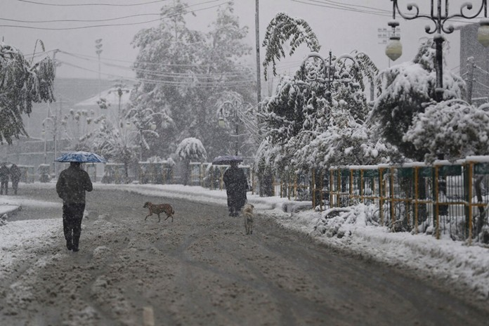 A dog crosses a street as people walk in the snow in Srinagar, Indian controlled Kashmir, Thursday, Nov. 7, 2019. (AP Photo/Mukhtar Khan)