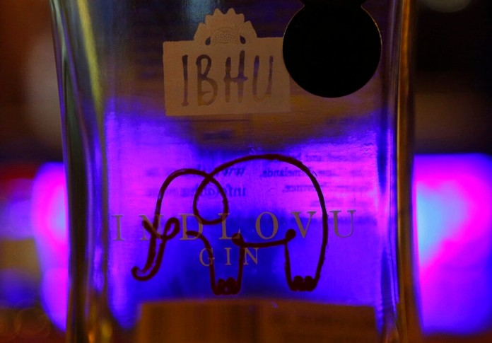 A bottle of elephant dung infused Indlovu, which means elephant in the Zulu language, gin rests on bar at a tasting session at Botlierskop Private Game Reserve, near Mossel Bay, South Africa, Monday, Oct. 23, 2019. (AP Photo/Denis Farrell)
