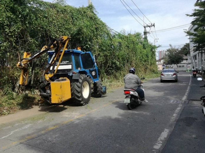 Trees and bushes are trimmed in SoiPaniad Chang.
