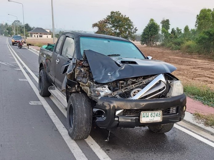 Runaway horse Ladinir, a filly about three years old, was killed when hit by this pickup in Sattahip.