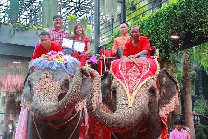 Sattahip District Chief Anucha Intasorn oversaw the legal proceedings in Najomtien where 86 couples registered their marriages and rode in an elephant parade at Nong Nooch Tropical Garden.