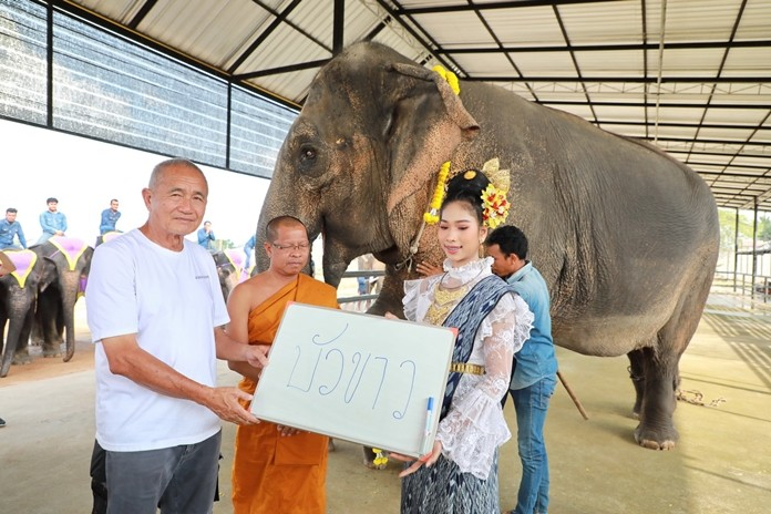 Kampol Tansajja and Phra Khru Kasem Kittisophon together with a charming dancer hold up a sign proclaiming 'Bua Khao' (White Lotus) as the name of the new baby.