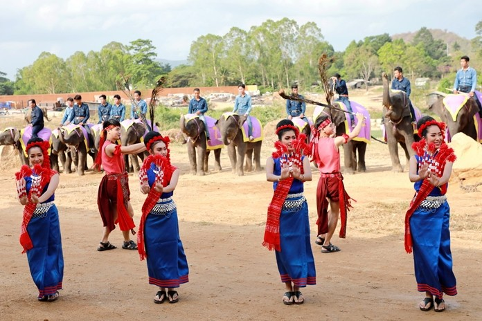 Mahouts on their elephants watch over the pretty dancers.
