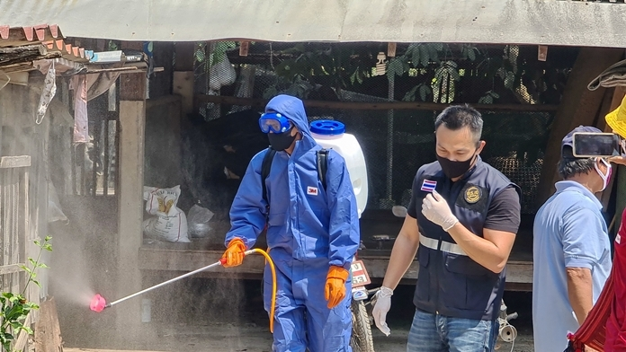 Dr. Satira personally supervises the cleansing operations.
