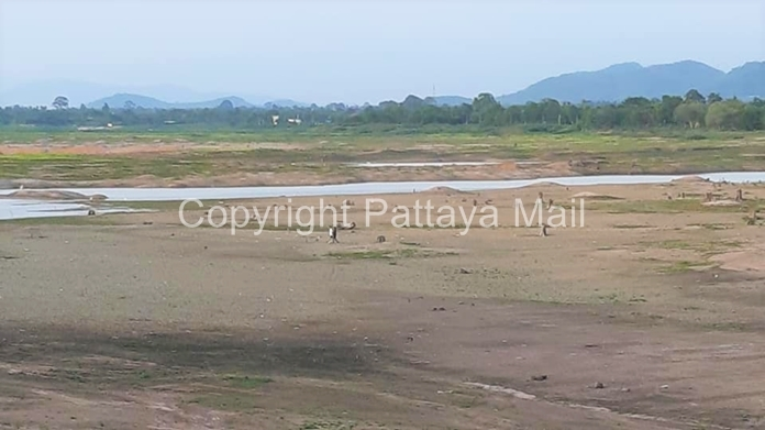 The water level in Mabprachan Lake on the east side of Pattaya City is critically low. People can be seen walking on the dried lakebed.