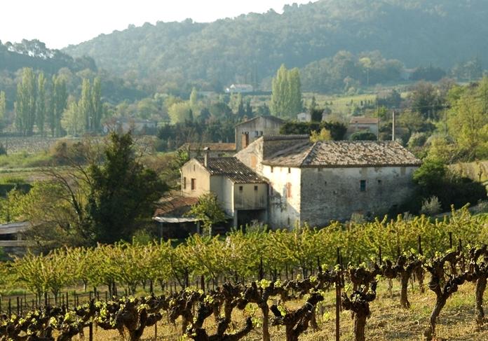 Provence: home of fine rosé.