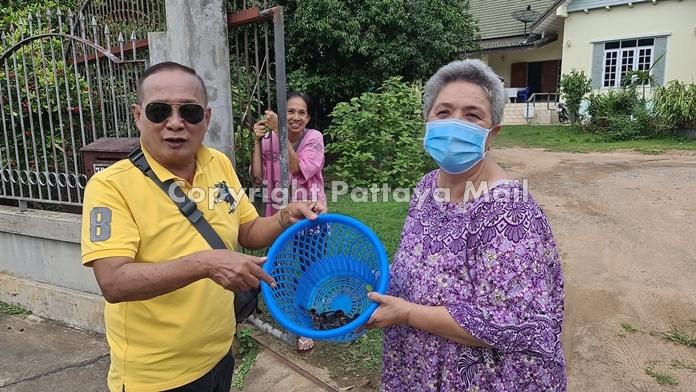 Neighbor Duangnet Jutboon volunteered to care for the birds until the chicks could fend for themselves.