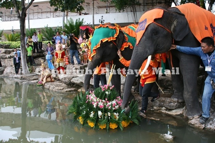 Pattaya puts its hopes in organizing festivals such as the Loy Krathong festival and other spots and cultural activities