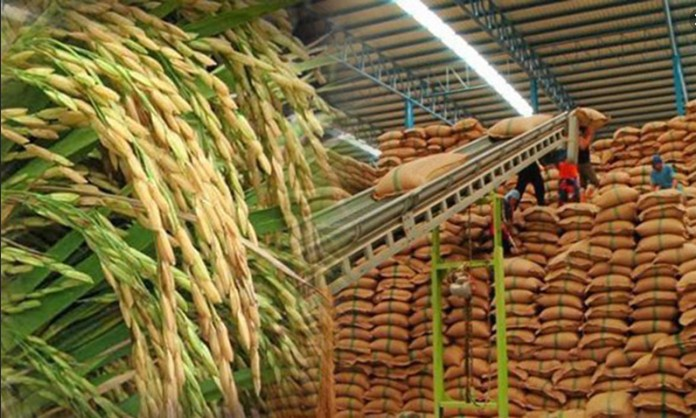 In the first six months, Thailand shipped 3.14 million tons of rice, down 32.7% from the same period last year, with an export value of US$2.2 billion, down 12% year-on year.