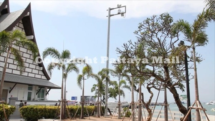 One of the poles at Bali Hai Pier with multiple CCTV cameras installed which cover part of the area.