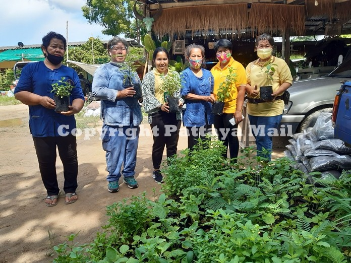 Narisa Yenruksa (3rd left) Agricultural Extensionist, Banglamung Agricultural Office distributes backyard garden seedlings and fertilizing soil for vegetable garden to the  Nongprue housewives group.